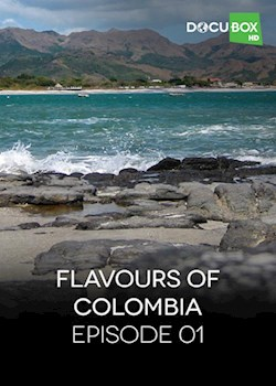 Flavours Of Colombia