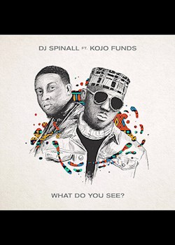 DJ Spinall - What Do You See? (ft. Kojo Funds)