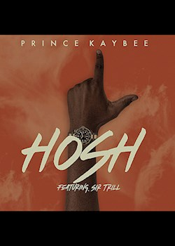 Prince Kaybee - Hosh (ft. Sir Trill)